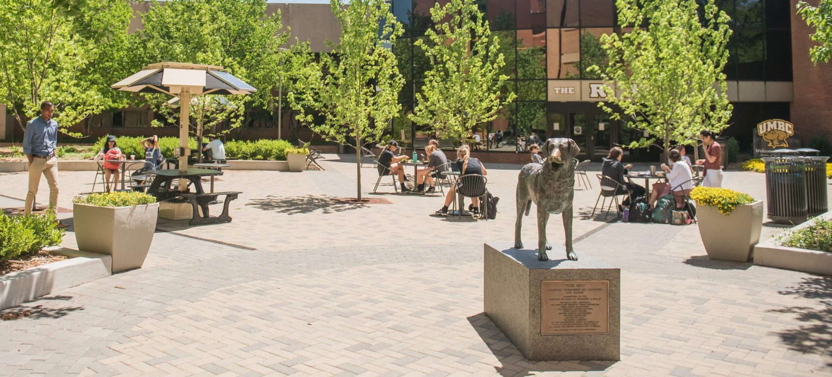 """UMBC recognized as a """"Best Value College"""" by Forbes Magazine"""