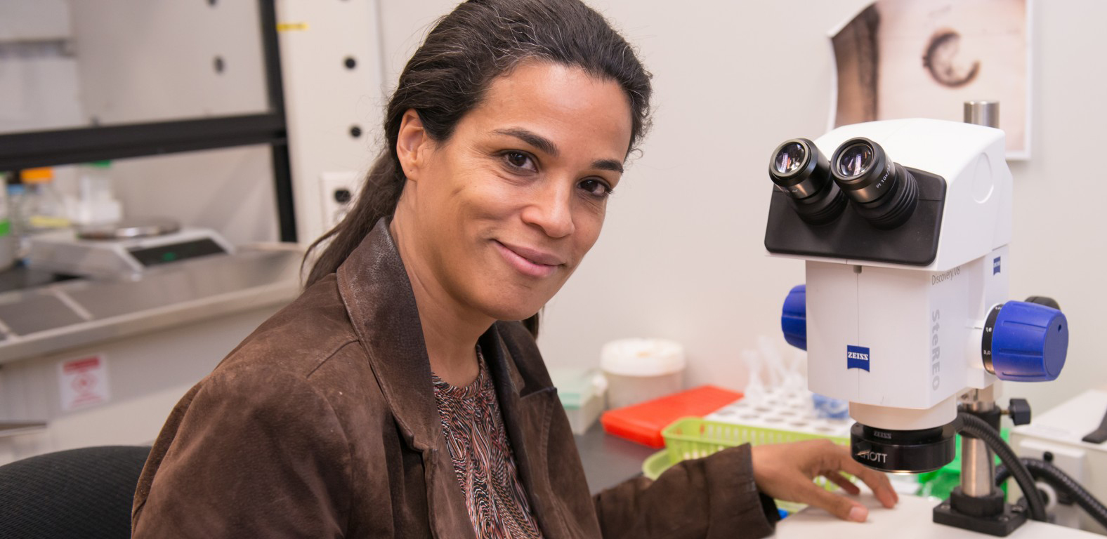 UMBC biologist receives NIH award to continue transplant research